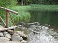 Vrbické pleso od drevenice 14 km