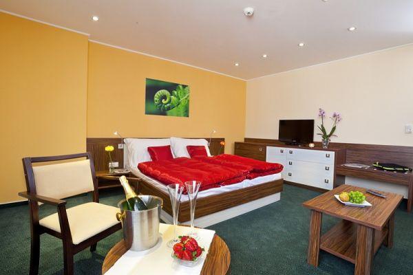 hotel viktor bratislava. Black Bedroom Furniture Sets. Home Design Ideas
