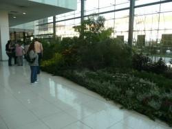Botanická záhrada - Nitra