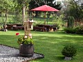 Záhrada v lete - za drevenicou