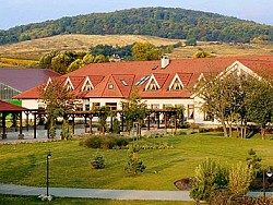 Hotel GAUDIUM garni - Malé Karpaty - Limbach  | 123ubytovanie.sk