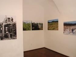 Malokarpatské múzeum - Pezinok | 123ubytovanie.sk