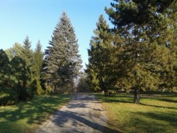 Arborétum Borová hora - Zvolen