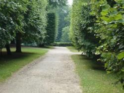 Park - Arborétum Turčianska Štiavnička